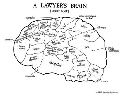 A Lawyer's Brain