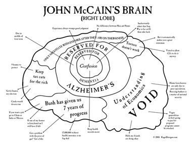 John McCain's Brain