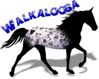 Black Walkaloosa
