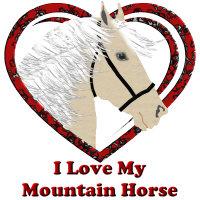 I Love My Mountain Horse, Palomino!
