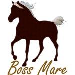 Mtn Horse Boss Mare