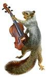 Squirrel with Violin