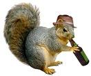 Squirrel Beer Hat