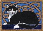 Celtic Kitty
