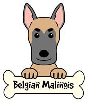 Personalized Belgian Malinois