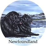 Newfoundland Snow Pair