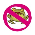 Just Say No to Frogs