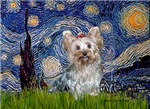 STARRY NIGHT<br>& Yorkshire Terrier