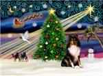 CHRISTMAS MAGIC<br>& Shetland Sheepdog (Tri)#11