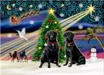 CHRISTMAS MAGIC<br>& 2 Black Labradors