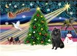 CHRISTMAS MAGIC<br>& Schipperke