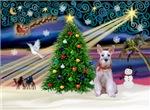 CHRISTMAS MAGIC<br>& Miniature Schnauzer