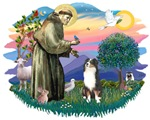 St. Francis #2 &<br> Australian Shepherd (tri)