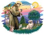 St. Francis #2 &<br> Tibetan Spaniel #4