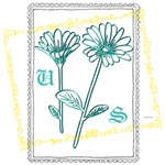 OYOOS US flowers design