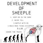 OYOOS Sheeple design