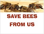 Save Bees From Us