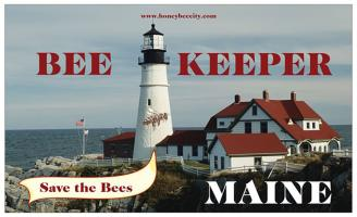 Maine Beekeeper Landscape