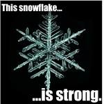 Strong Snowflake