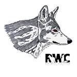 Red Wolf Portrait