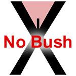 No More Bush!