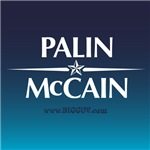 The PALIN McCain Ticket