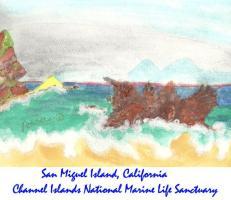 San Miguel Island, California