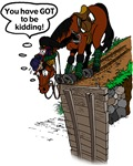 Horse at Drop Jump