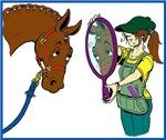 Horse Braider