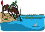 Horse at Water Jump