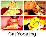 Cat Yodeling