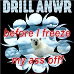 Drill ANWR