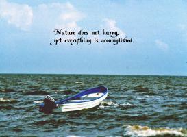 Nature Waits