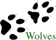 Wolves and Wolf Tracks