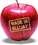 Made In Ellijay Red Apple