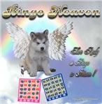 Bingo HeavenGrey Husky