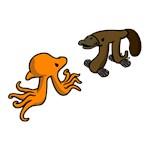 Octopi VS Platypi