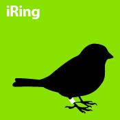 iRing (green)
