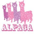 Alpaca4: Pink