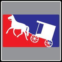 Masor League Amish