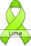 Lime Green Ribbon