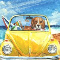 Beach Bound Beagle in a Bug