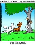 #9 Dog family tree
