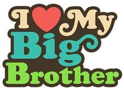 I Love My Big Brother t-shirts