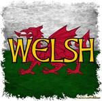 Welsh Designs