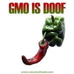 GMO JOE Smokey