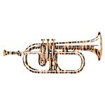 Tiger Rag Trumpet