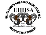 Mouflon Sheep Logo