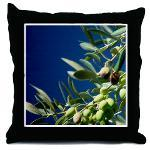 Napa Valley California Throw Pillows