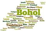 Bohol Geographic Word Cloud